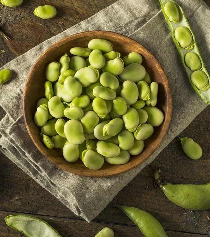 Khasiat kacang Fava Untuk Kesehatan